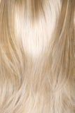 Texture de cheveu Image libre de droits