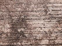 Texture de ciment Photo stock