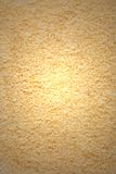 Texture de copeaux de noix de coco Images stock