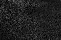 Texture de cuir Image libre de droits