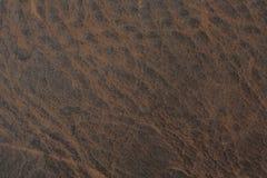 Texture de cuir de cru de Brown Photographie stock