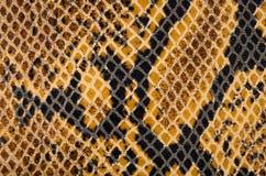 Texture de cuir de peau de serpent images stock