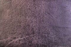 Texture de cuir gris photographie stock