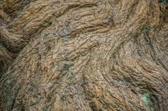 Texture de cuivre approximative photographie stock