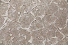 Texture de désert Images stock