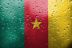Texture de drapeau du Cameroun Photo stock