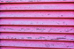 Texture de fenêtre en bois dans la couleur rose Photo libre de droits