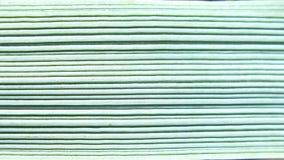 Texture de feuille d'herbe Photo libre de droits