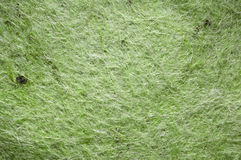 Texture de feutre de vert Photo libre de droits