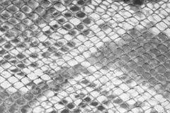 Texture de fond Images stock