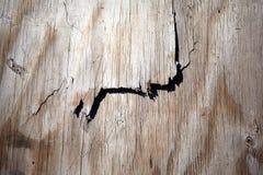 Texture de fond de briser le bois image stock