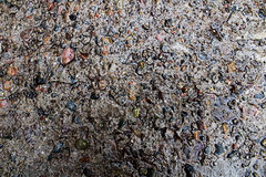 Texture de fond d'asphalte humide Photos libres de droits