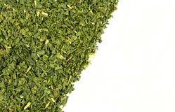 Texture de fond de thé vert de feuilles mobiles Photos libres de droits