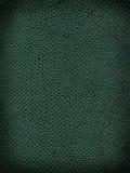 Texture de fond du Roi cobra Photos stock