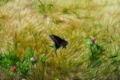 Texture de fond de fractale Papillon noir se reposant sur l'herbe photo stock
