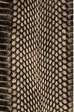 Texture de fond de peau de serpent Copie élégante Fond abstrait dernier cri Serpent de texture illustration stock