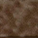 Texture de fourrure de chien de Brown Image stock