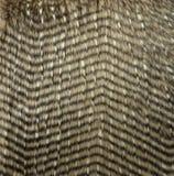 Texture de fourrure de Faux Images stock