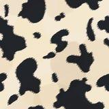 Texture de fourrure de vache Photographie stock