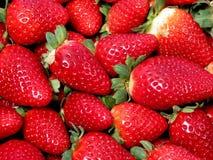 Texture de fraises Photographie stock libre de droits
