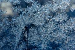 Texture de gelée de glace Images stock