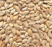 Texture de graines Image stock