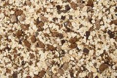 Texture de granola Photographie stock libre de droits