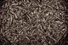 Texture de jacinthe d'eau sèche Photographie stock