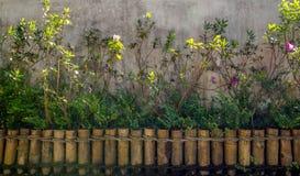 Texture de jardin Photographie stock