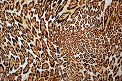 Texture de léopard Images libres de droits