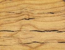 Texture de l'arbre sur la coupe de scie Couleur de gingembre photo libre de droits