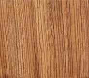 Texture de l'arbre sur la coupe de scie Couleur de gingembre photos libres de droits