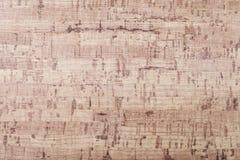 Texture de la marqueterie en bois de placage Photographie stock