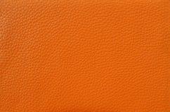 Texture de la peau Image libre de droits