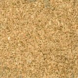 Texture de la surface de liège Image stock