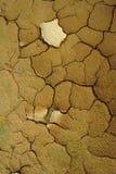 Texture de la terre images stock