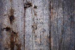 Texture de la vieille surface en bois avec des trous de ver photo libre de droits