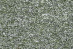 Texture de laine verte Photo stock