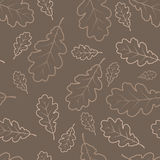 Texture de lames de chêne d'automne Image stock