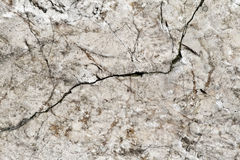 Texture de marbre Photos libres de droits