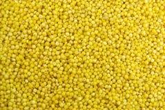 Texture de millet Image stock