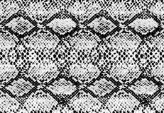 Texture de modèle de peau de serpent répétant noir monochrome et blanc sans couture Vecteur