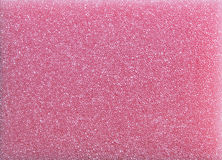 Texture de mousse de rose de HD Photos libres de droits
