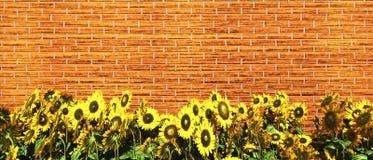 Texture de mur de briques de pierre illustration stock