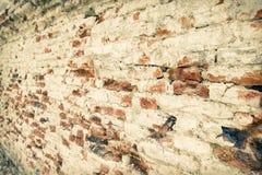 Texture de mur de briques de plan rapproché Photos libres de droits