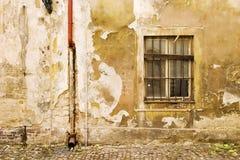Texture de mur de Prague Photos stock