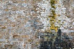 Texture de mur en pierre avec les dommages et la mousse de l'eau Image libre de droits