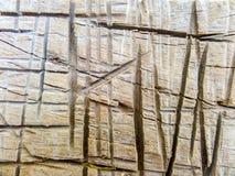 Texture de mur ou fond en bois de mur photographie stock libre de droits