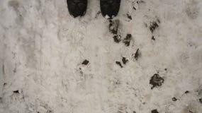 Texture de neige de fond de neige Image stock