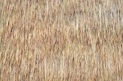Texture de paille Image libre de droits